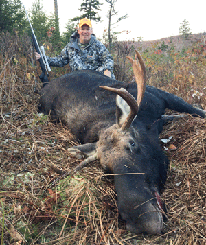 F w vermont 39 s moose hunt preliminary total is 40 for Vermont fish and wildlife