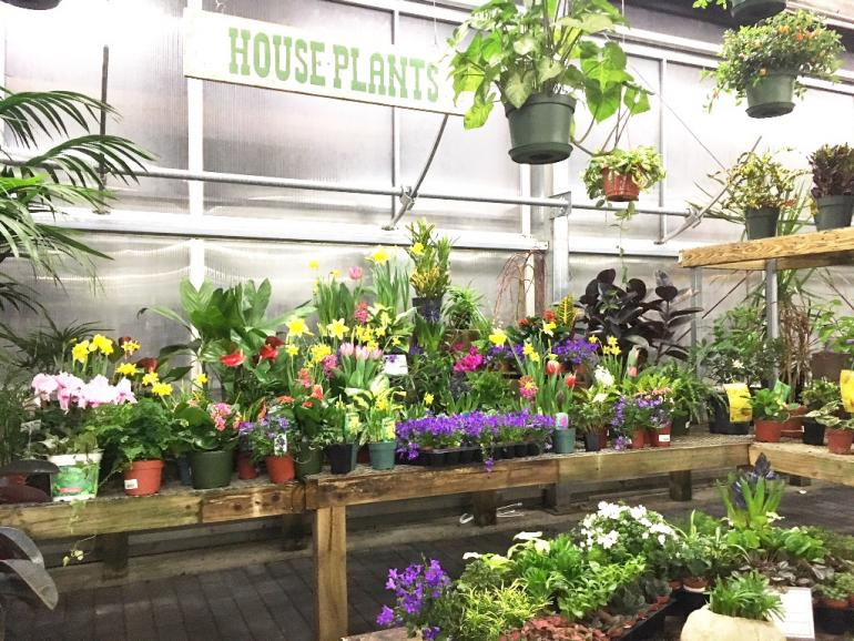Vermont Business Magazine Employee Owned And Burlington Based Gardeneru0027s  Supply Company Has Opened Its Newest Garden Center In Lebanon, NH.